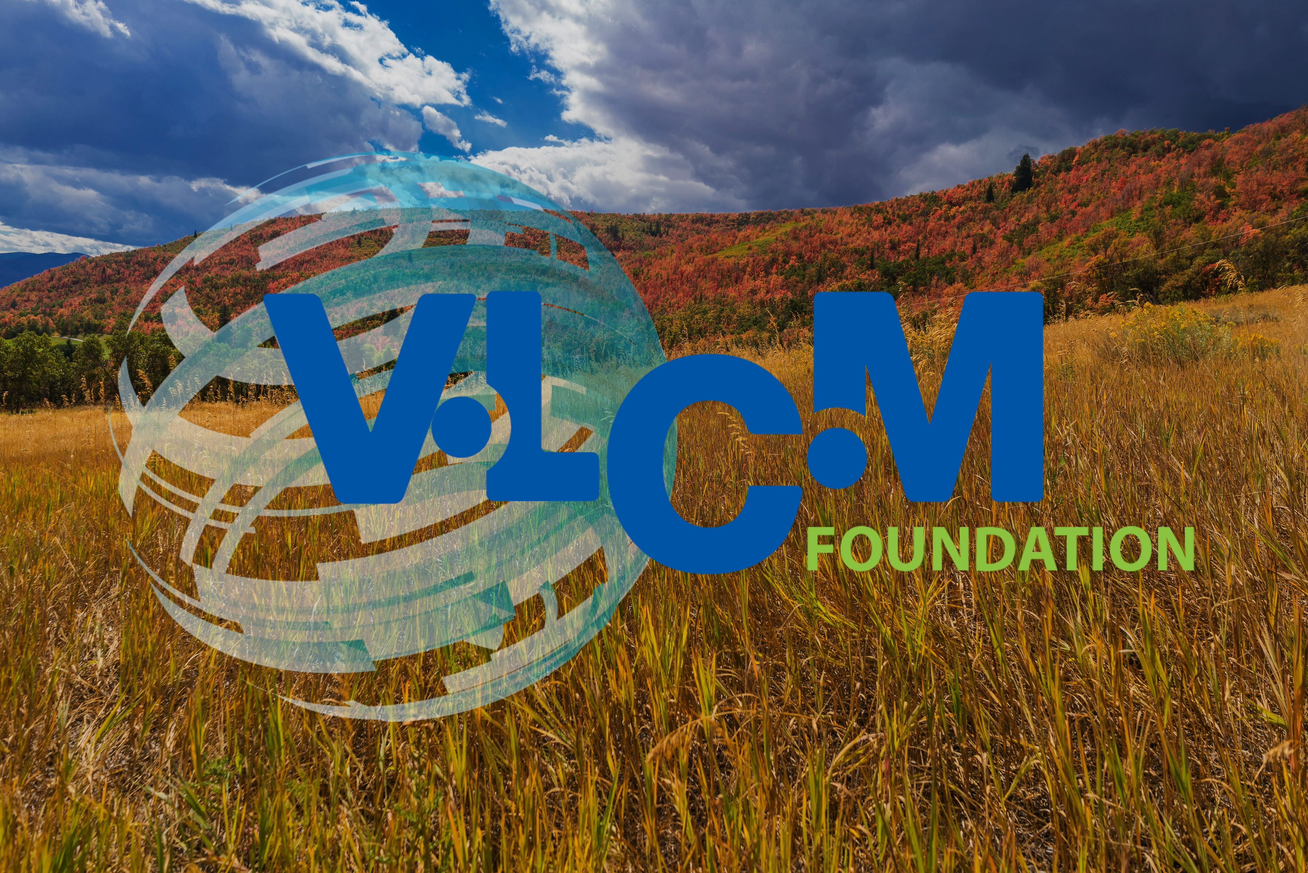 VLCM Foundation